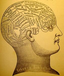 historia de la teoría neurocognocitiva