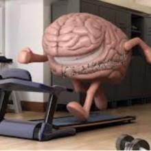 Beneficios cerebrales del ejercicio físico